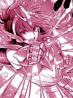 聖鬥士星矢 聖斗少女翔